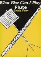What Else Can I Play? Flute Grade 4